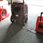 Dehumidifier and Air Movers supplied and installed